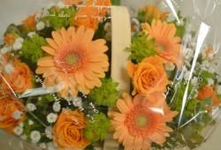 オレンジ色のガーベラ