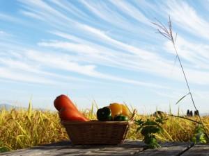 収穫祭が起源