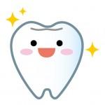 乳歯が抜けたらどうする?歯茎のケアや抜けた歯について調べた!