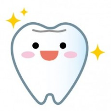 強い歯が生えてくるように