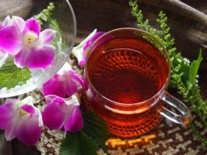おしゃれな紅茶の写真