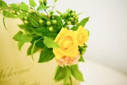 黄色いバラの写真!