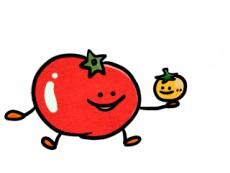 トマトなどの夏野菜には体を冷やす効果が!