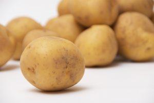 新ジャガイモの写真